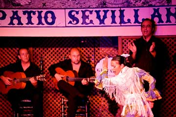 Patio Sevillano: Espectáculo flamenco con degustación